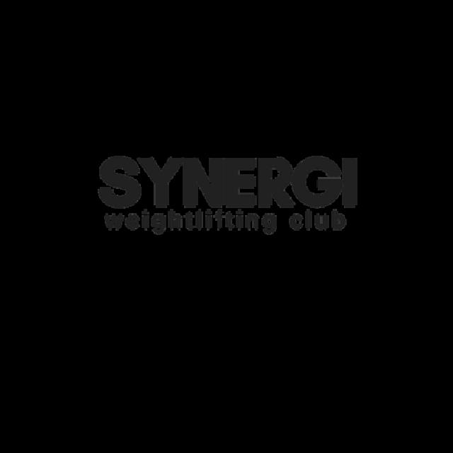 SYNERGI Logo in black writing